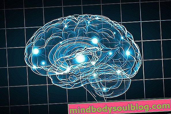 Mäßige geistige Behinderung: Eigenschaften und Behandlungen