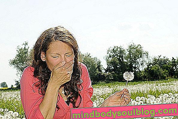 Antihistaminiques pour les allergies