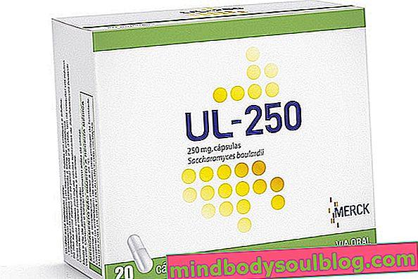 À quoi sert l'UL-250