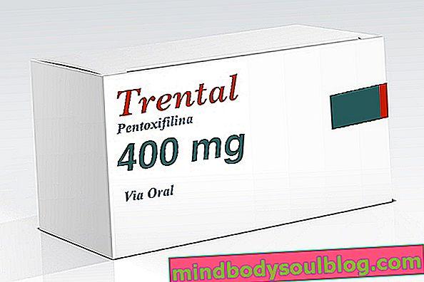 Пентоксифиллин (Трентал)