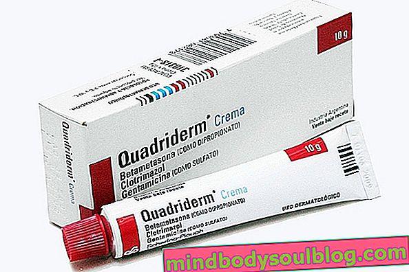 Quadriderm: salap dan krim untuk apa