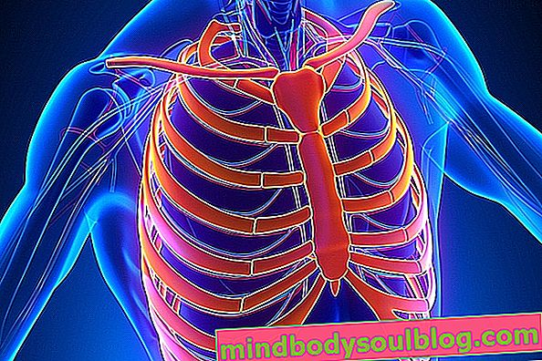 Fracture des côtes: symptômes, traitement et récupération