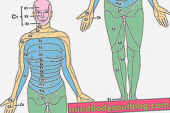 ما هي الأمراض الجلدية وأين هم