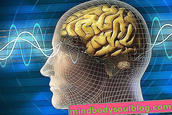 Anoxie cérébrale: qu'est-ce que c'est, symptômes et comment le traitement est-il effectué