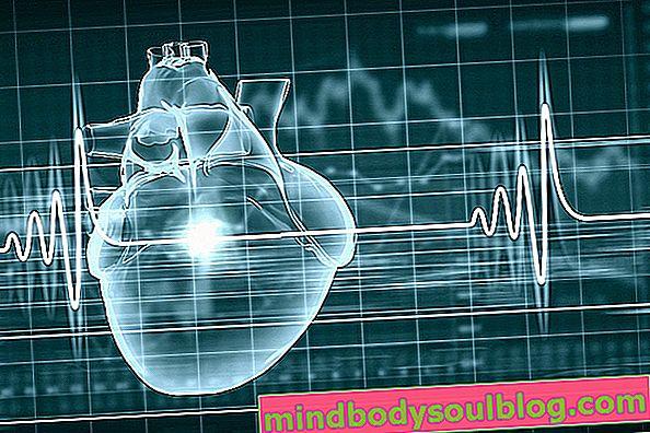 לשם מה קוצב הלב וכיצד הוא עובד