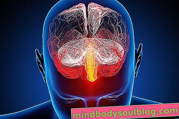 โรคไข้สมองอักเสบจากเชื้อไวรัสคืออะไรอาการหลักและการรักษา