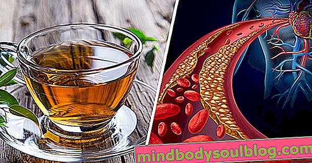 5 cholesterinsenkende Tees