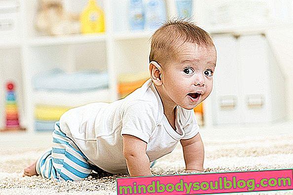 Développement du bébé à 8 mois