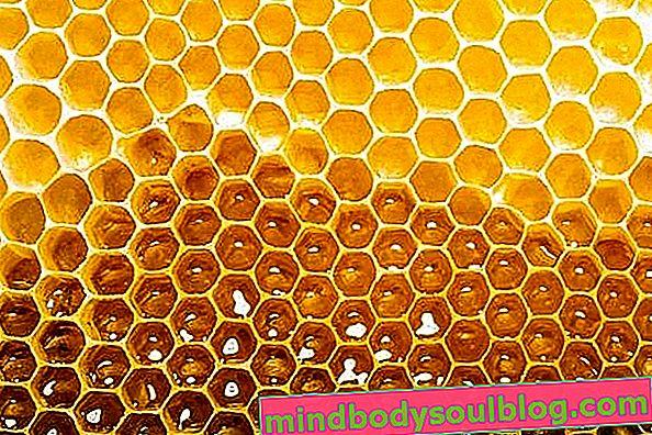 Як споживати мед, не жируючи
