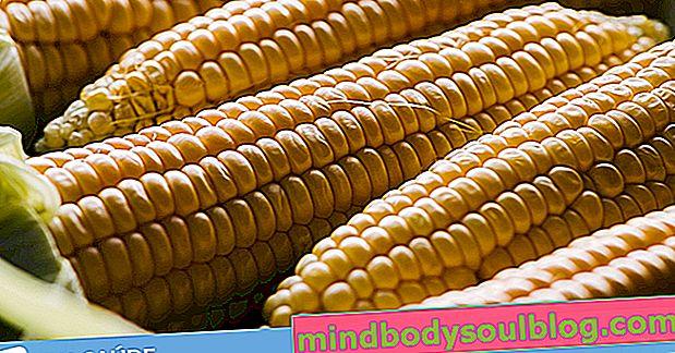 7 преимуществ кукурузы для здоровья