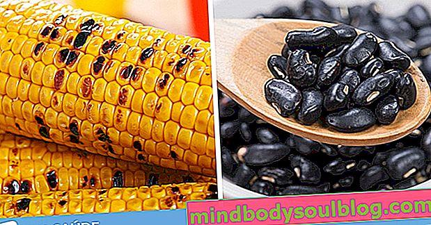 Богатая белками диета для вегетарианцев