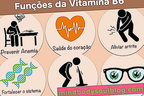 Vitamine B6 (Pyridoxine): à quoi ça sert et quantité recommandée