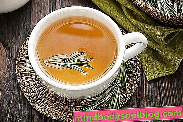الاختلافات بين الشاي والتسريب والديكوتيون