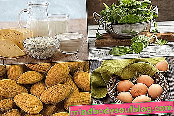 Aliments riches en vitamine B2