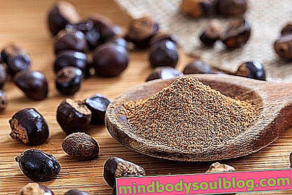 Principaux avantages de la poudre de guarana et quantité recommandée