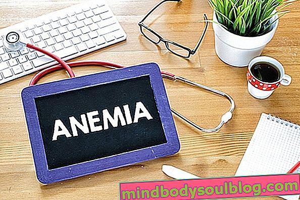 Symptômes des principaux types d'anémie