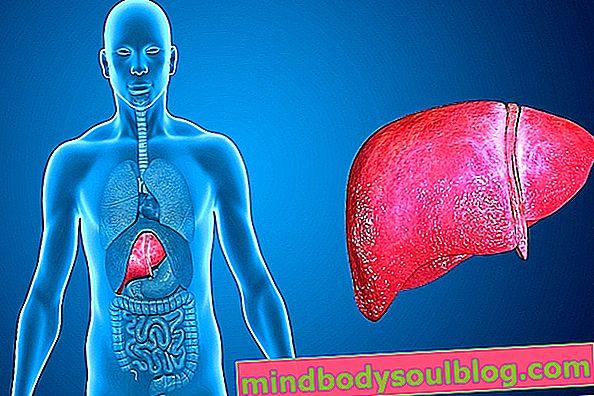 علاجات لمشاكل الكبد