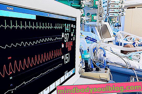 Wofür wird der provisorische Herzschrittmacher verwendet?