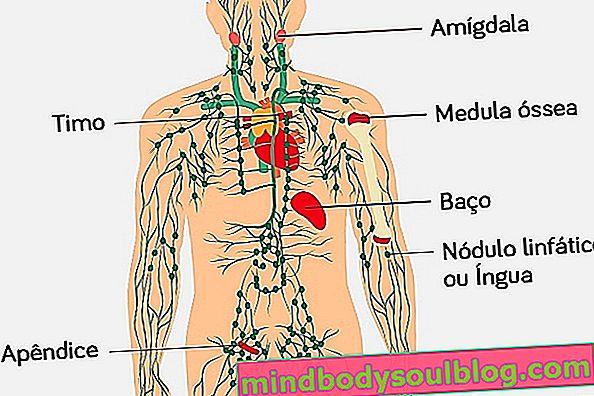 ما هو التوتة وأعراضه وعلاجه