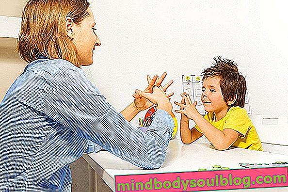 טיפולים עיקריים לאוטיזם (וכיצד לטפל בילד)