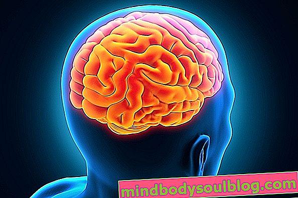 Jaka dysautonomia, główne objawy i leczenie