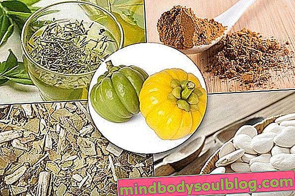5 plantes médicinales pour perdre du poids