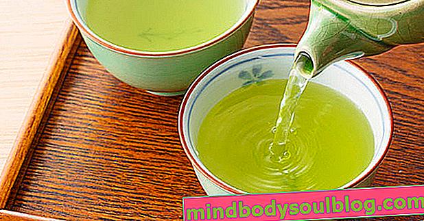 Le thé vert accélère le métabolisme et vous aide à perdre du poids