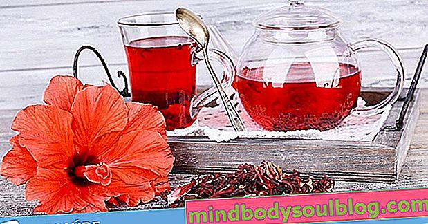 Comment prendre du thé d'hibiscus pour perdre du poids