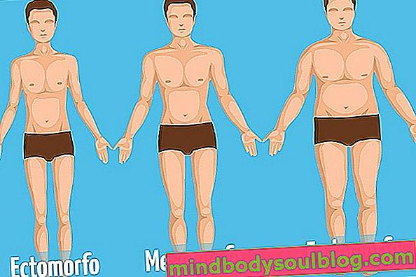 Sachez identifier votre Biotype pour maigrir plus facilement