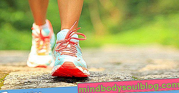 6 principaux bienfaits de la marche pour la santé