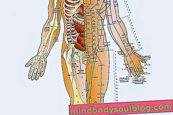 Di mana titik akupunktur utama