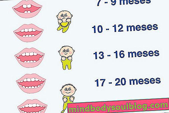 Първите зъби на бебето: кога се раждат и колко са