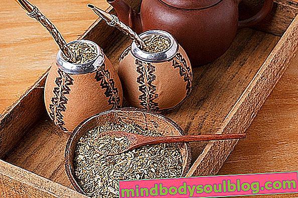 ما هو شاي المتة والفوائد الصحية