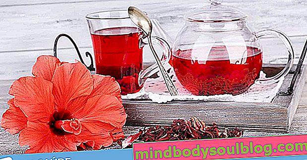 Thé d'hibiscus: 9 bienfaits pour la santé et comment le prendre
