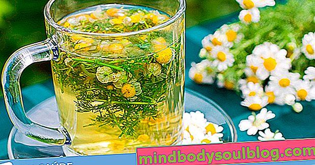 9 יתרונות בריאותיים של תה קמומיל