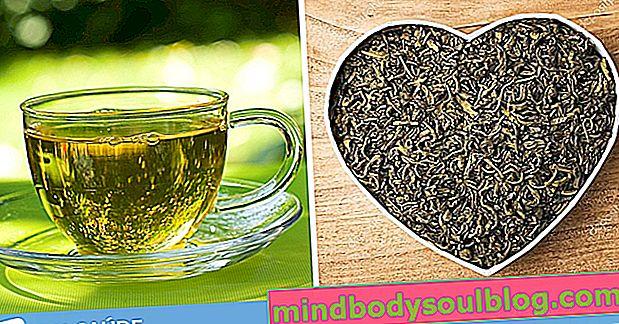 8 faedah kesihatan teh hijau