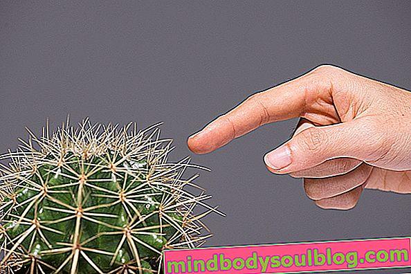 Comment enlever les épines de la peau