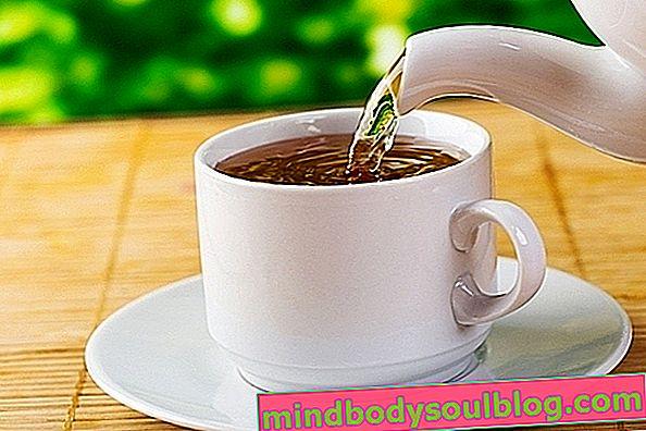 3 recettes avec du thé guaco pour soulager la toux