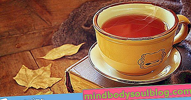 7 tranquillisants naturels pour l'anxiété, l'insomnie et la nervosité