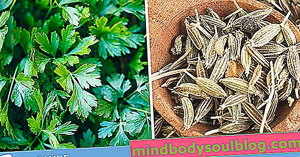6 thés diurétiques pour gonflement et rétention d'eau