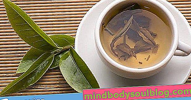 Beste Tees gegen Darmgas