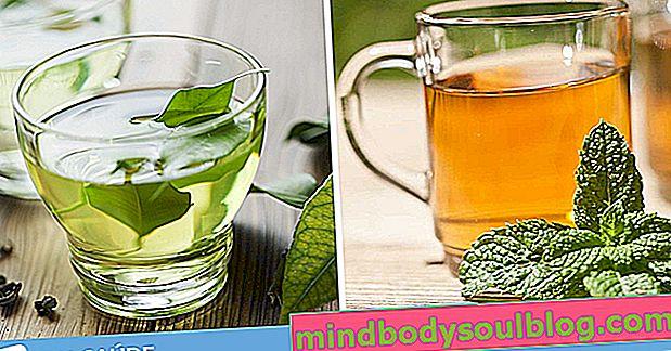 7 Tees zur Verbesserung der Verdauung und zur Bekämpfung von Darmgas