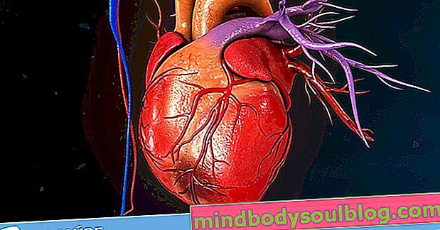 10 תסמינים עיקריים להתקף לב