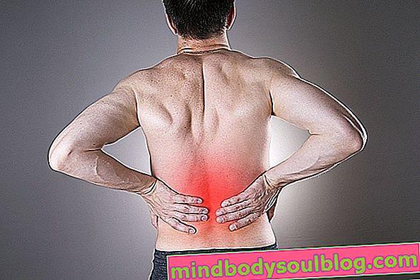 Аптека та природні засоби від болю в нирках