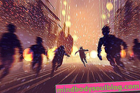Schizophrénie paranoïde: qu'est-ce que c'est, symptômes et traitement